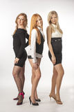 Three beautiful sexy girl on white background Stock Photos