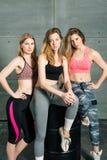 Beautiful sports girls in sportswear fitness posing portrait stock image