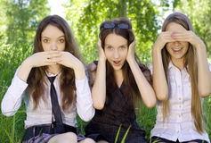 Three beautiful student girls in the park Stock Images