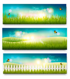 Three beautiful summer meadow landscape banners Stock Photo