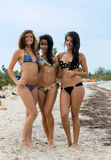 Three beautiful women in bikinis. Three beautiful sexy women with shapely figures wearing bikinis standing arm in arm on a sandy tropical beach Stock Photo