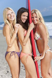 Three Beautiful Women Surfers With Surfboard Stock Photo
