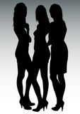Three beautiful womens Royalty Free Stock Photography