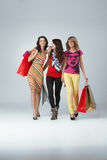 Three beautiful young women holding shopping bags Stock Image