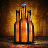 Three Beer bottle on grunge background Royalty Free Stock Photo
