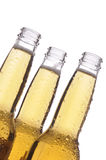 Three Beer Bottles Royalty Free Stock Images