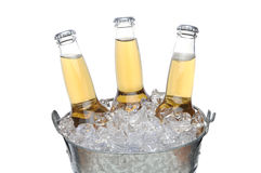 Three Beer Bottles in Ice bucket Stock Photo