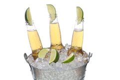 Three Beer Bottles with Limes. Three Clear Beer Bottles with lines in the necks in a bucket of ice isolated on white horizontal format Royalty Free Stock Image