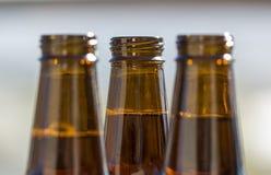 Three Beer Bottles Stock Photo
