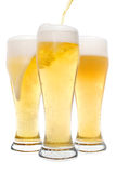 Three Beer Glasses. Three glasses of foamy beer isolated on a white background royalty free stock photo