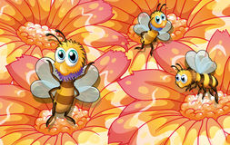 Three bees collecting foods. Illustration of the three bees collecting foods Stock Photography