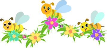 Three Bees and Hibiscus Flowers Stock Photo