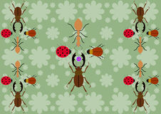 Three beetles and the ant Stock Photography