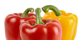 Three bell peppers - conversation concept Stock Images