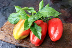 Three Bell Peppers On Wooden Background Stock Photos