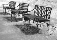 Three benches. In a winter park Stock Photography