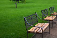 Three benches in park Royalty Free Stock Images