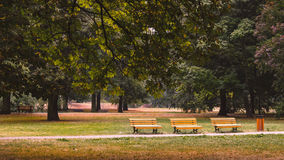 Place for chill out. Three wooden benches in the Komensky park in Ostrava city, Czech republic Stock Photos
