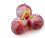 Three berries of red  grapes close up Royalty Free Stock Photo