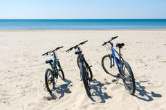 Three bicycles are on the beach on sea background Royalty Free Stock Photography