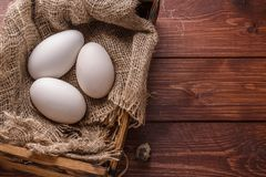 Three big fresh goose eggs in a box, copyspace Stock Images