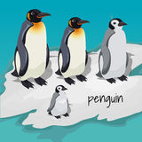 Three big penguins and one little penguin royalty free illustration