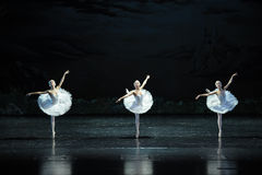 Three big Swan-The Swan Lakeside-ballet Swan Lake. In December 20, 2014, Russia's St Petersburg Ballet Theater in Jiangxi Nanchang performing ballet Swan Lake Stock Photos