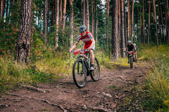Three bikers in the mountains by downhill Royalty Free Stock Photo
