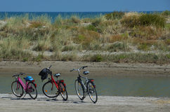 Three bikes on a beach Stock Images