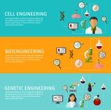 Three Biotechnology Banner Set. Three horizontal biotechnology banner set with description of cell engineering bioengineering and genetic engineering vector Royalty Free Stock Photography