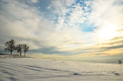 Three birch trees on the left on the background of a huge field in the snow royalty free stock image
