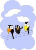 ฺThree Bird Stock Image