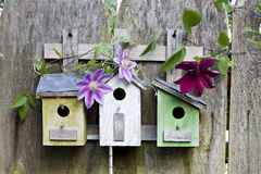 Three birdhouses on old  wooden fence Stock Images