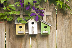 Three birdhouses on old wooden fence with flowers. Three cute little birdhouses on rustic wooden fence with purple Clematis plant growing on them Royalty Free Stock Image