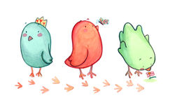 Three birds. Three cute birds and their prints. Watercolors and pastels Royalty Free Stock Photos