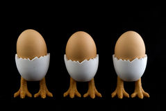 Three birds with eggs. Three birds with whole eggs Royalty Free Stock Images