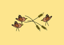 Three birds in grain Royalty Free Stock Photography
