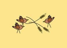 Three birds in grain. Three birds feasting on corn in the ear Royalty Free Stock Photography
