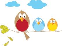 Three birds. Sitting on a branch Stock Image