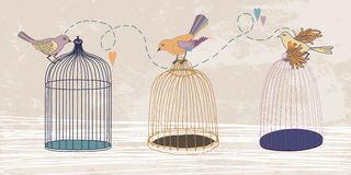 Three Birds and Three Cages Royalty Free Stock Photo