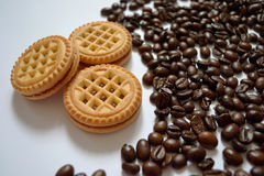 Three biscuits stock images