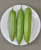 Three bitter melon Stock Photo