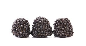Three black jujube colored balls Royalty Free Stock Photo