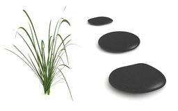Three Black Pebbles with Grass. Digital render of three black pebbles with a grass plant isolated on white Stock Photography