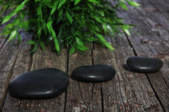 Three black spa or prayer stones and herbs Stock Images
