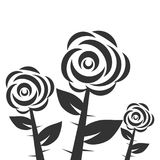 Three black and white roses, roses with thorns and leaves Stock Photo