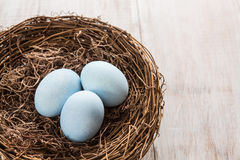 Three Blue Easter Eggs In a Nest Stock Photo