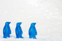 Three blue penguins in snow Royalty Free Stock Photos