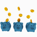 Three blue piggy bank for savings with coins in 3D render image. Three pigs in blue color piggy bank with gold coins for savings on isolated white Royalty Free Stock Photo