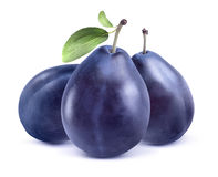 Three blue plums  on white background Stock Photography